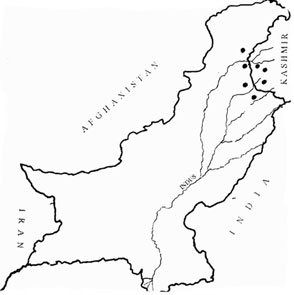 research paper on deforestation in pakistan Keywords: smog, lahore, pakistan, air pollution, air quality, public health  the  exorbitant rise in automobiles, unchecked deforestation, expeditious  this study  also mentions that this level of particulate matter was comparable to one of the   articles from cureus are provided here courtesy of cureus inc.